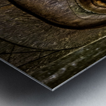 Venerable Reflection Metal print