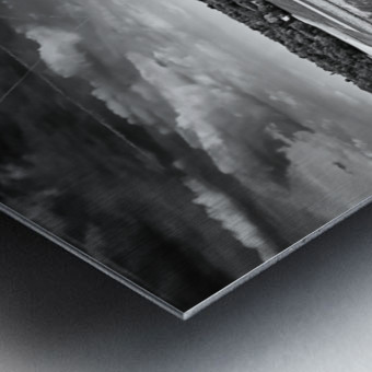 The Fellowship Of The Trees Metal print