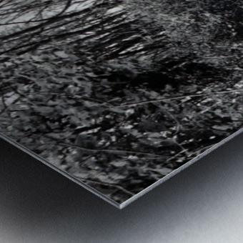 Back Driveway Superhighway Metal print