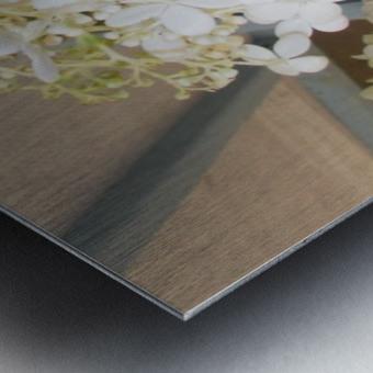 DSCN0889 Metal print