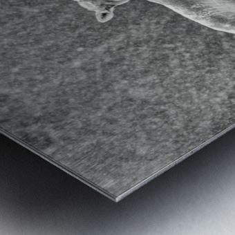 The Trio Metal print