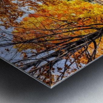 _TEL6354 Edit Metal print