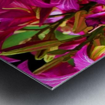 Hong Kong Orchid Metal print