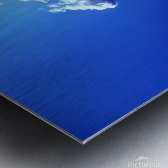 blue 1 Metal print