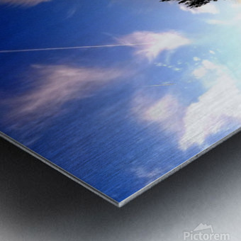 nube 59 Metal print
