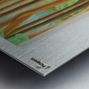 Cedar Edge Metal print