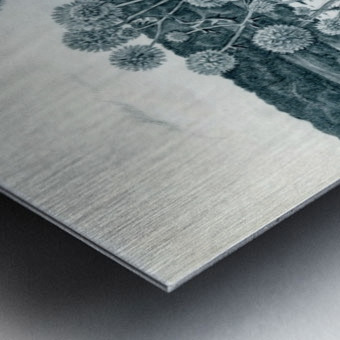 Scotch_Thistle Metal print