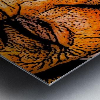 Squint Metal print