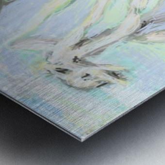 2 9 20.Rbacqpng2t Metal print