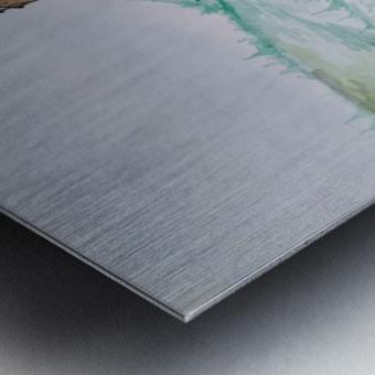 Landscape_DKS_1 Metal print