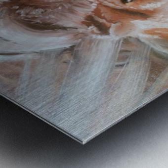 Leos.Fondness Metal print