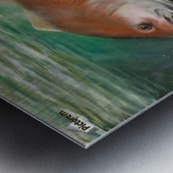 redfish Metal print