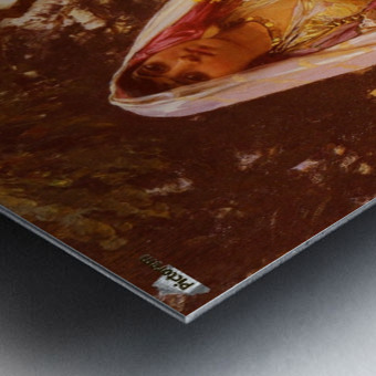 Campagne D Algiers Metal print