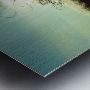 2004_0102Dallas0015 Metal print