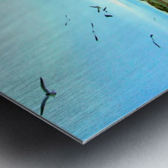 DSCF2094 Metal print