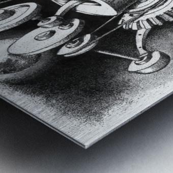 WES Metal print