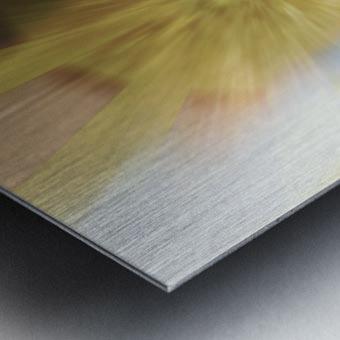 New Begingings Metal print