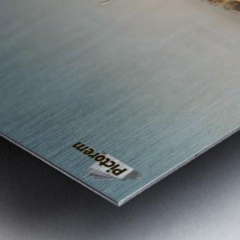 Herde mit eselreitendem Hirtenknaben Metal print