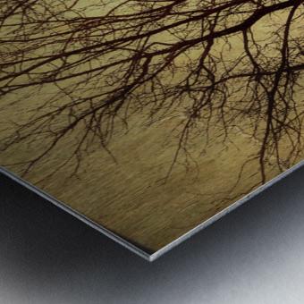 Ramifications Metal print