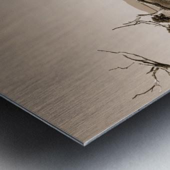 Isle aux Grues Metal print