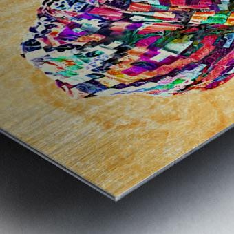 Color Through Culture I Metal print
