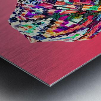 Color Through Culture VII Metal print