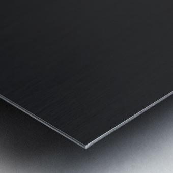Boat - XIX Metal print