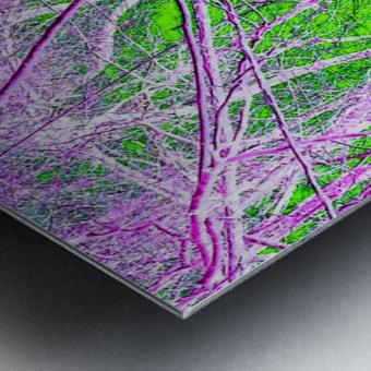Tree on a Line Metal print