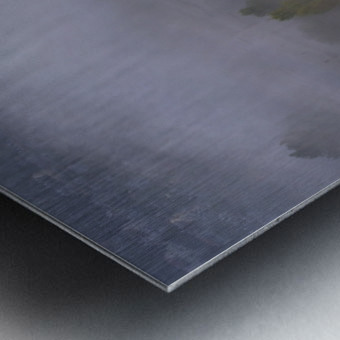 Foggy morning N2 Metal print