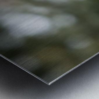 Lexploratrice Impression metal