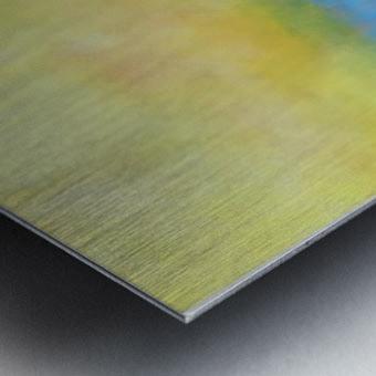 Realm of the Senses V Metal print
