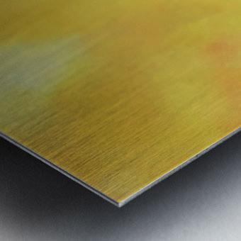 Exalted II Metal print