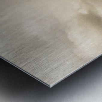 Nature IV Metal print