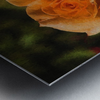 Orange Delight Metal print