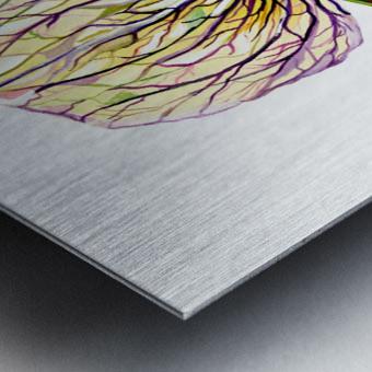 Orchid Venus Slipper Metal print