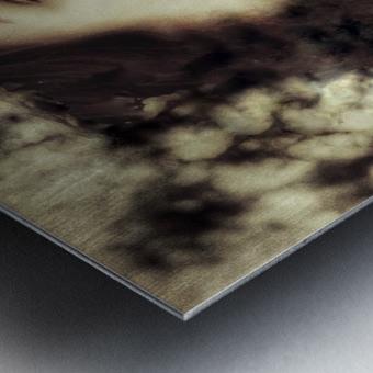 Maiden Metal print