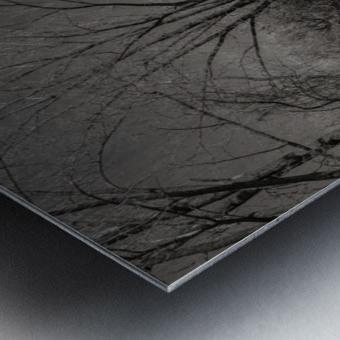 Varennes Metal print