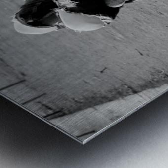 La Sieste Metal print