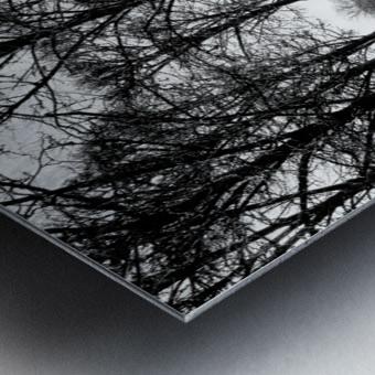Reflection de la Nuit Metal print