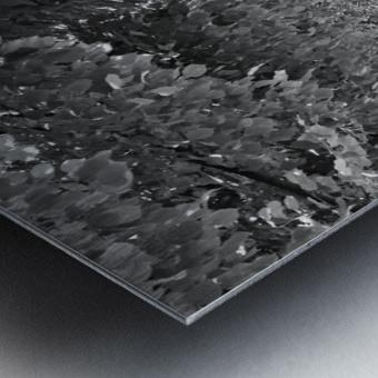 Arbre dalignement Metal print