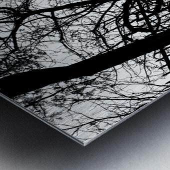 Pere Lachaise Metal print