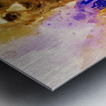 455 Metal print