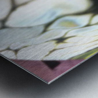 fractral Metal print