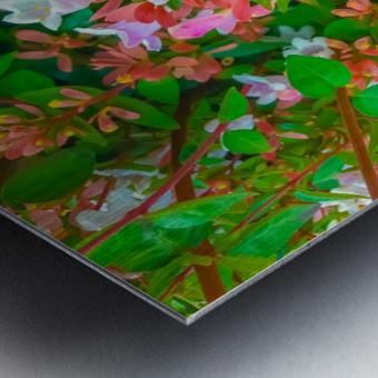 closeup blooming pink flowers with green leaves Metal print