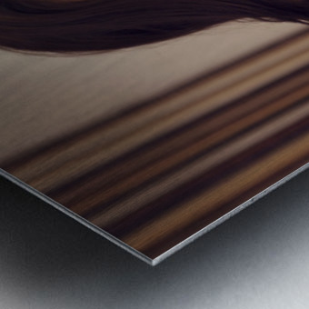 relatosx Metal print