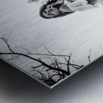Linquietude dOphelia Metal print