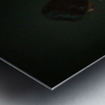Le beau dos 1 Metal print