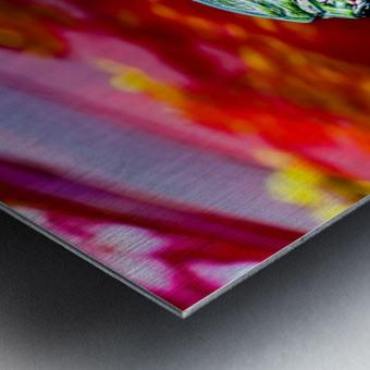 The Monarchs Lion Metal print