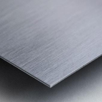 Koshlong Lake Fog Metal print