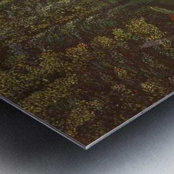 Derwent Walk Metal print